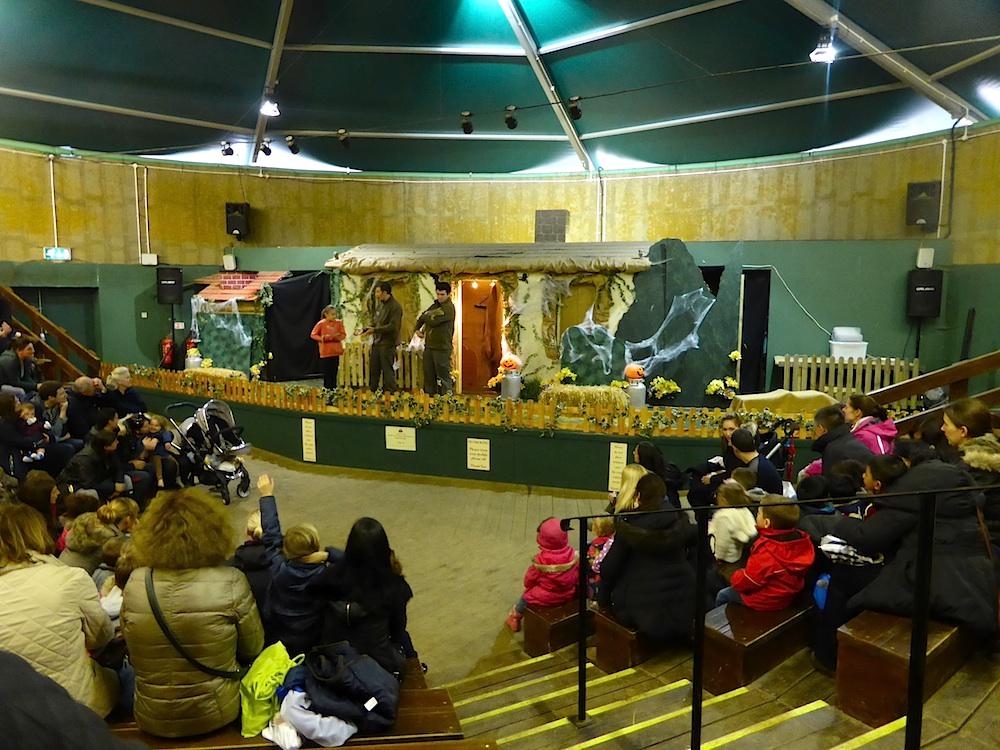 willows farm zoo show