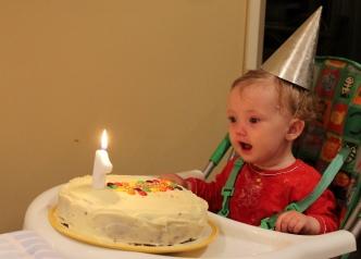 Isobel 1st birthday 13 (1024x735)