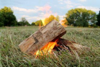 campfire aldenham country park