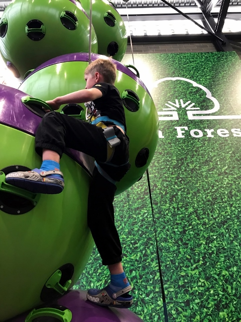 clip and climb spheres waltham forest feel good centre (480x640)